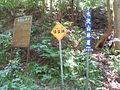 Nyakutakuji road.JPG