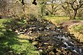 O Brook stepping stones - geograph.org.uk - 1256148.jpg
