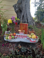 Oakland Buddha offerings.png