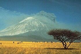 Vista de la sabana de Tanzania (al fondo el volcán Ol Doinyo Lengai en erupción)