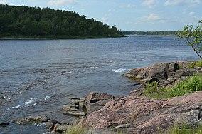 Un fiume scintillante al sole scorre sulle rocce che si trasformano in acque bianche.  Una fitta foresta cresce vicino all'acqua.