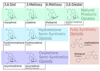 Opioid epidemic Type of drug epidemic