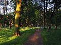 Ostroleka-park3.jpg