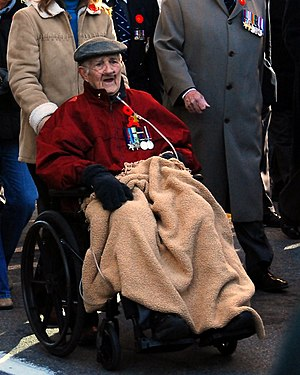 A Canadian war Veteran participating in the Pa...