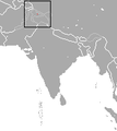 Pale Gray Shrew area.png
