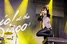 Panic at the Disco Im Park 2016 (1 von 11).jpg