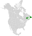 Papilio brevicauda range map.PNG