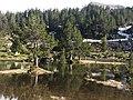Parc d'Aïguestortes i Estany de Sant Maurici-4.jpg