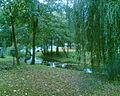 Park w sąsiedztwie Pałacu Radziwiłłów w Starejwsi - panoramio.jpg