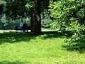 Park z młodą parą.JPG