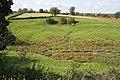 Pasture near Branston - geograph.org.uk - 998874.jpg
