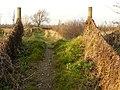 Path at Cranfleet Lock - geograph.org.uk - 1090640.jpg