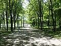 Path near Beaver Lake in Mount Royal Park.JPG