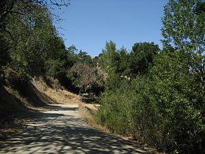 Briones Regional Park - View from Old Briones Trail at Briones Regional Park.
