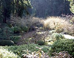 Pdx washpark japanesegarden rightside.jpg