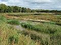 Peat bog, Westhay Moor Nature Reserve (geograph 2652283).jpg