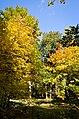 Pekhra-Yakovlevskoye Park 03.jpg