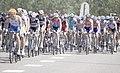 Peloton - 1ere étape du Tour de France 2010.jpg