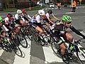 Peloton after 38km 2016 Gent–Wevelgem (women).jpeg