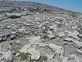 Pembroke, Malta - panoramio (54).jpg