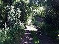 Pennyhooks Lane, Watchfield - geograph.org.uk - 1120734.jpg