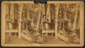 People, posed on the porch of their cottage, South Orrington, from Robert N. Dennis collection of stereoscopic views.png