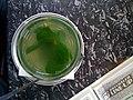 Peppermint tea Cafe Drechsler.jpg