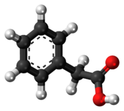 Ball-and-stick model of phenylacetic acid
