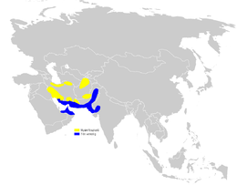 Phylloscopus neglectus distribution map.png