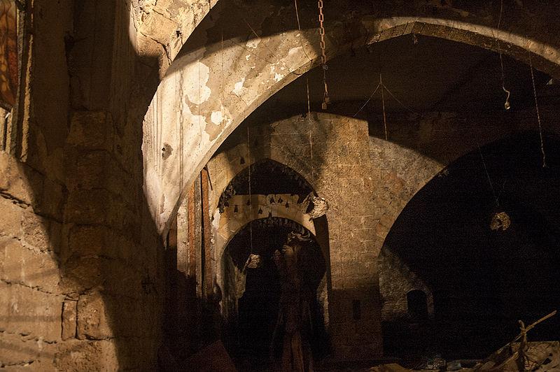 עטלפים בבית הסראיה הישן