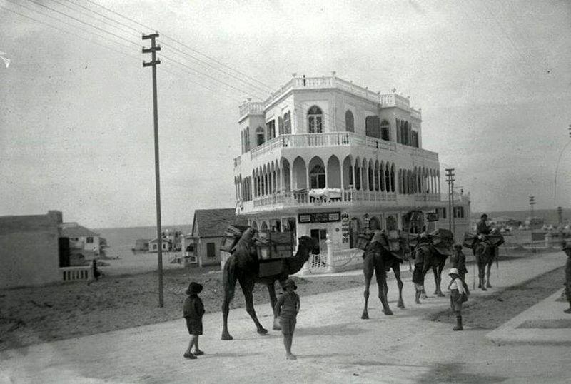 תל אביב - שיירת גמלים ברח' אלנבי