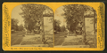 Pine Street, north from Erie, by P. B. Greene.png