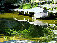 Piney Creek 9134 Rocks.jpg