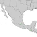 Pinus hartwegii range map 1.png