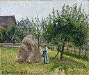 Pissarro - Pommiers à Eragny, matinée de soleil, 1903.jpg