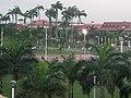 Place des Palmistes sous la pluie.jpg