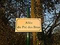 Plaque Allée Pré Brus St Cyr Menthon 2011-11-22.jpg