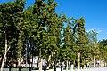 Plaza del congreso 004 (6808810939).jpg