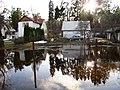 Pludi druvciema 2011 - panoramio (34).jpg