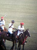 Polo in India (The Sports Series) (Feb 28, 2001)