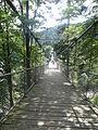Pont de Steinwasen Park.JPG