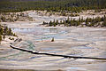 Porcelain Geyser Basin.jpg