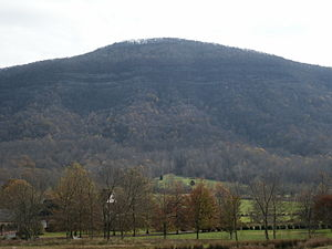 Powell Valley - Looking up towards Grindstone Ridge from Powell Valley