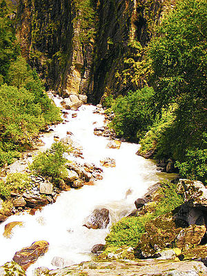 River Pushpawati - The Pushpawati rushing out of Valley of Flowers