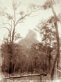 Queensland State Archives 5108 Coonowrin 1160 Ft Looking north from Blackall Rd c 1894.png