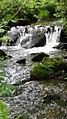 Río Grela a su paso por Trabadela.jpg