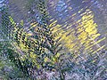 RIPPLING WATER-FALL FOLIAGE - panoramio.jpg