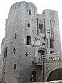 Raglan Castle, Monmouthshire 14.jpg