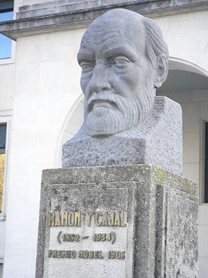 Santiago Ramón y Cajal - Bust of Santiago Ramón y Cajal in Burgos.