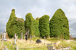 Rathmullan Priory SW 2009 09 25.jpg